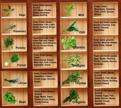 herbbox