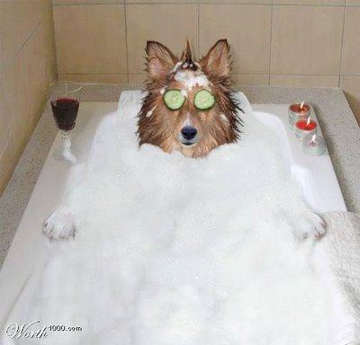 National+Bubble+Bath+Day2