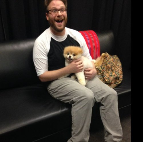 This picture of Seth Rogen holding a puppy