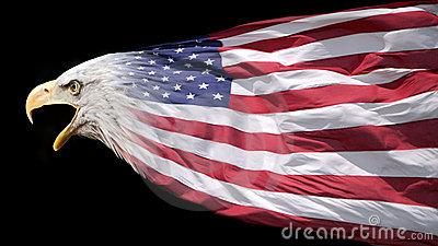 patriotic-eagle-flag-22408183