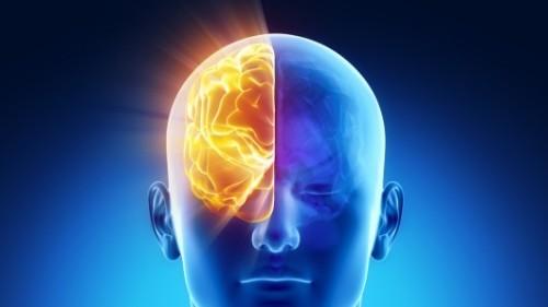 brain-scan-speller