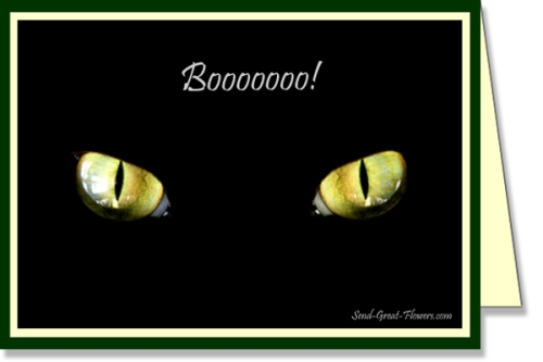 halloween-black-cat-ecard-lg