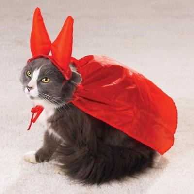 halloween-cat-costume2-400x400