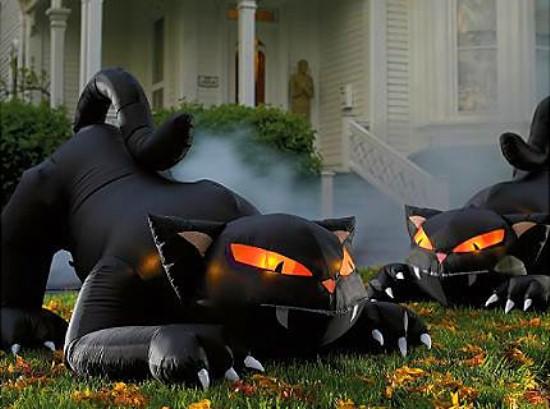 halloween_image236