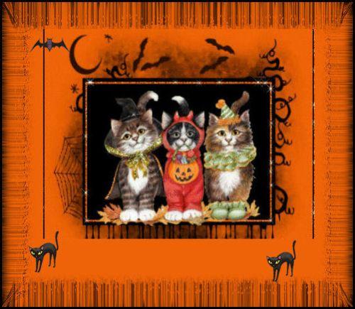 halloweencatsa-vi
