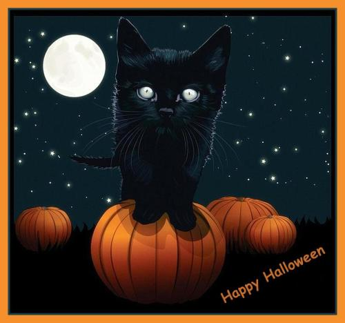 Happy-Halloween-Scary-Cat-At-Halloween-Full-Moon-Night-Picture-Wallpaper1