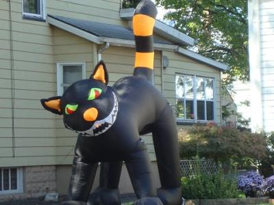 heres-a-picture-of-an-inflatable-halloween-cat-21409628