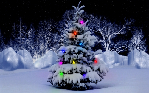 interior-ideas-cool-and-charming-snow-garden-decors-with-colorful-lights-as-decorate-outside-gorgeous-christmas-tree-designs-pictures-gorgeous-christmas-tree-interior-decorating-and-design-collecti