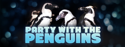 Partywiththepenguinsheader