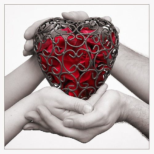b-405247-red_heart_on_the_hands