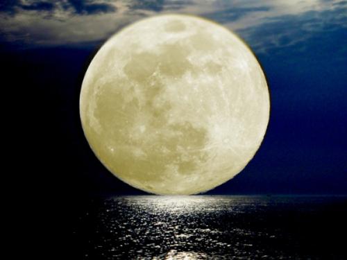 full-moon-237523-600x450