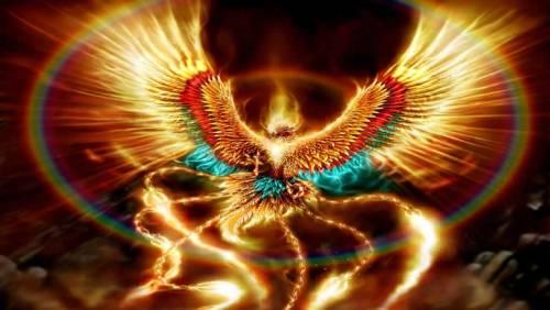 scorpio-phoenix