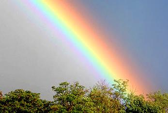 finde-einen-regenbogen-tag