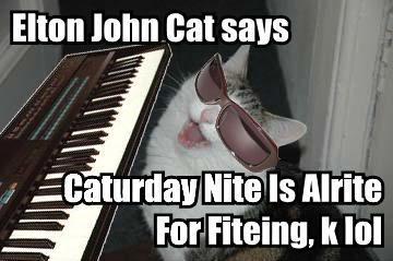 elton-john-cat-says-caturday-nite-i