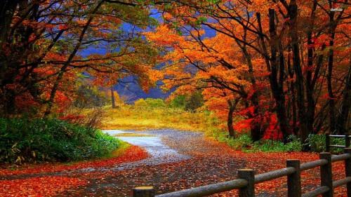 Autumn_Romantic_03