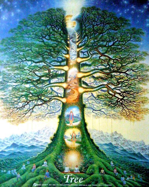 Tree_of_Life_Australia