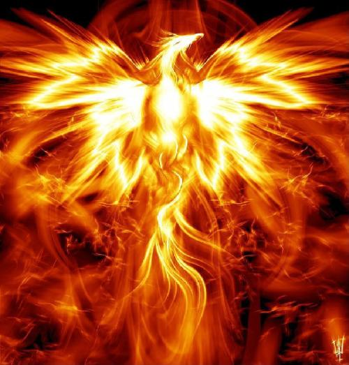White_Flame_Art-Dazzling_Phoenix_Consumption