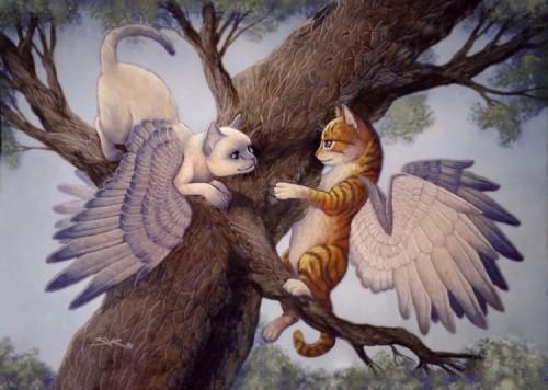 wingcats